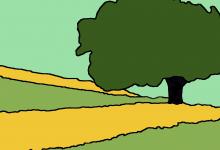 Landschaft-Linie